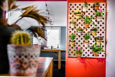 Verticale tuin groene muur voor kantoor
