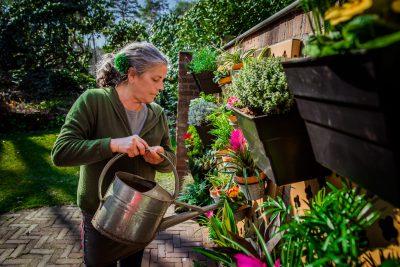 Verticale tuin kruidenrek voor verse kruiden buiten water geven