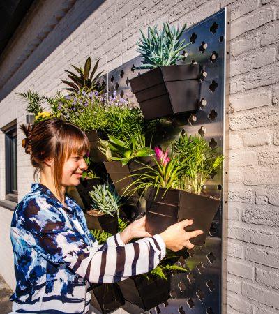 Bloemen bakken eenvoudig ophangen aan verticale tuin