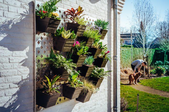 Verticale tuin met bloembakken buiten