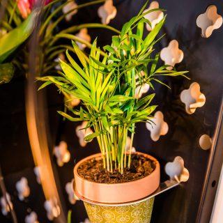 verticale-tuinen-zakelijk01